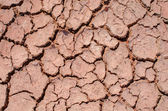 Global warming - parched earth — Stock Photo