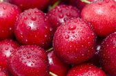 Cherry med vattendroppar — Stockfoto