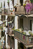 Balconies in Barcelona — Stock Photo