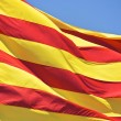 Stock Photo: CatalFlag
