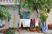 Mirtos на Крите — Стоковое фото