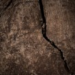 Stock Photo: Crack in Wood