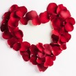 Rose Petal Heart — Stock Photo