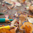 Colour Pencils and Shavings — Stock Photo #25246279