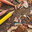 Colour Pencils and Shavings — Stock Photo #25246299