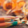 Colour Pencils and Shavings — Stock Photo