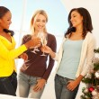 Christmas Toast — Stock Photo #25247349