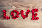 Rose Petal Love — Stockfoto
