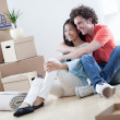 Couple Moving In — Stock Photo #25283587
