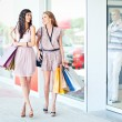 Enjoying Shopping — Stock Photo #25284311