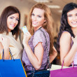 Shopping Together — Stock Photo #25284359