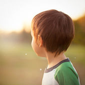 Little Boy's Portrait — Stock Photo