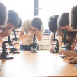 Stock Photo: Biology Lesson: Students Looking Through Microscopes