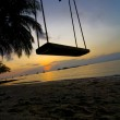 Swing between Palms — Stock Photo #30043963