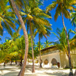 Stock Photo: Bungalow between palm trees