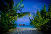 Palm View to beach villas at night Maldives — Stok fotoğraf