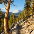 John Muir Trail & Pacific Crest Trail — Stock Photo