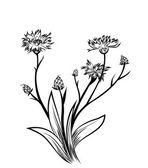 Cornflower — Stock Vector