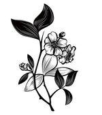 Tea plant — Stock Vector
