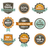 Vintage labels set. — Stock Vector