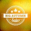 Big autumn sales vintage vector typography poster — Stock Vector