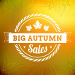 Big autumn sales vintage vector typography poster — Stock Vector #31216501