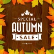 Autumn special sale vintage vector typography poster on wood background — Векторная иллюстрация