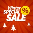 Winter special sale poster — Stock Vector