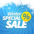 Winter special sale — Stock Vector