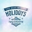Best Winter holidays trip poster — Stock Vector