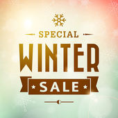 Winter special sale vintage vector typography poster — Stock Vector