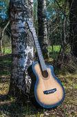 Guitar near a tree — Stock Photo