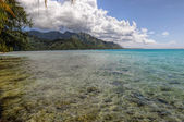 Clear Waters in Moorea.French Polynesia — Stock Photo