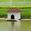 House for the ducks and bird — 图库照片