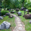Tranquil garden. selective focus on the stone path way — Stok fotoğraf