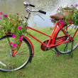 Red painted bicycle with a bucket of colorful flowers — Stock Photo