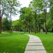 Walkway on green grassy in park — Stock Photo
