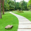 Walkway on green grassy in park — Stockfoto