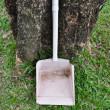 Old dustpan to collect leaves in the garden — Stockfoto