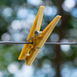 Clothes peg on clothesline cord — Stock Photo