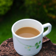 Coffee cup in garden — Stock Photo #34924887