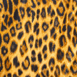 Leopard skin pattern soft blanket material — Stock Photo
