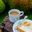 Coffee cup in garden — Stock Photo #34928095