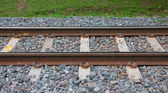 Thailand railway with grass and rock — Foto Stock