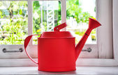 Red watering can — Stock Photo