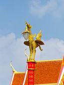 分離の黄金の白鳥電球 — ストック写真