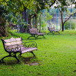 Benches in beautiful green park — Stock Photo #39811933