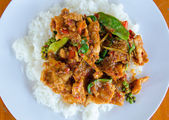 Fried rice with Spicy wild boar. — Foto Stock
