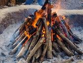 Spalování palivového dřeva v ohni — Stock fotografie