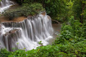Waterfall in deep rain forest jungle — Stock Photo